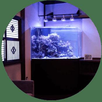 東京アクアガーデンの水槽オーダーメイド