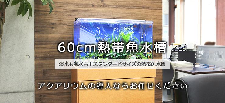 60cm水槽レンタル・リースサービス