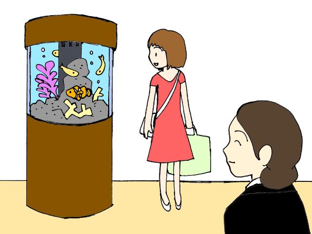 店舗 ホテル 水槽レンタル 設置