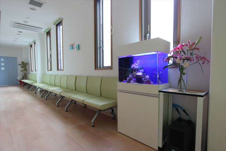 総合病院 水槽レンタル 水槽設置事例1