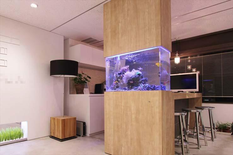 オフィス 企業 水槽レンタル セラピー
