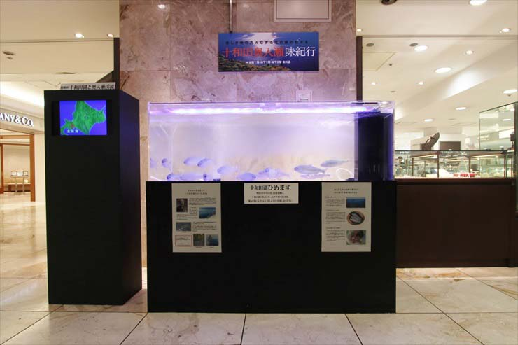 店舗 ホテル 水槽 イベント