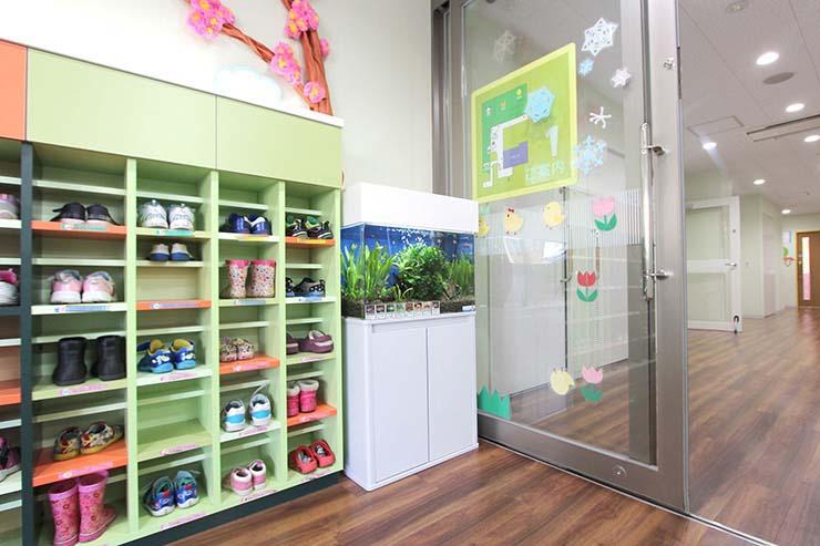 幼稚園 保育園 水槽レンタル 玄関