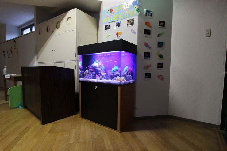 幼稚園 保育園 水槽レンタル ホール