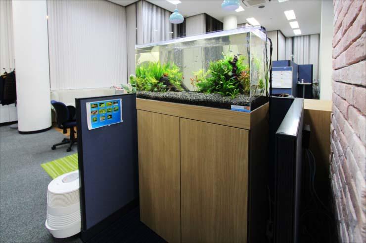 オフィス 企業 水槽レンタル フロア