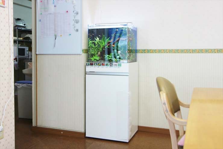 介護施設 老人ホーム 水槽 食堂