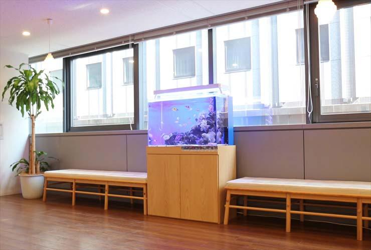 オフィス 企業 水槽レンタル 廊下