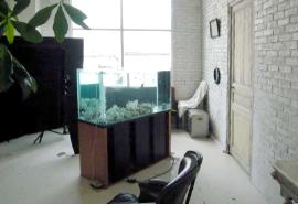 撮影フォトスタジオに設置した水槽