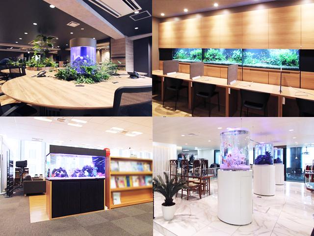 オフィス 企業 水槽レンタル 空間演出