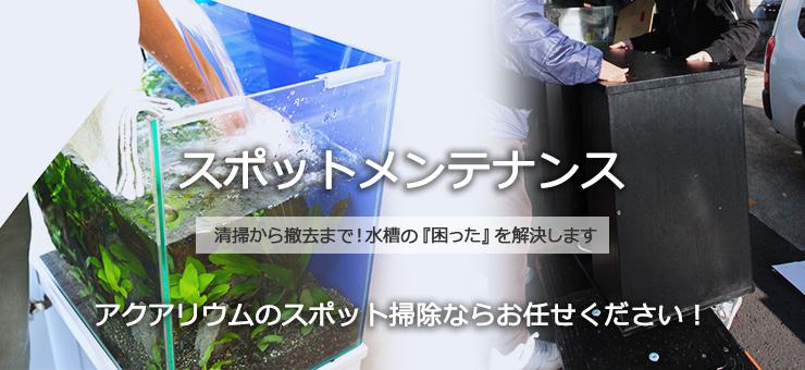 水槽スポットメンテナンスサービス 水槽掃除サービス