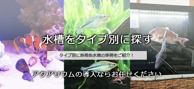 東京アクアガーデンでレンタルすることができる水槽の種類一覧はこちら!水槽サイズや熱帯魚の種類、様々な場所に合わせて設置されたアクアリウムをご紹介します