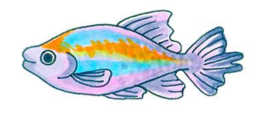 幼稚園 保育園 水槽レンタル 熱帯魚